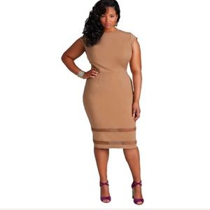Women's plus size casual dress in champagne